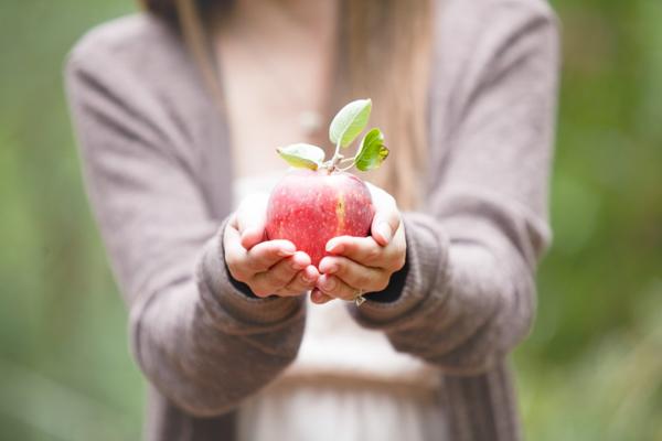 apple picking (10)