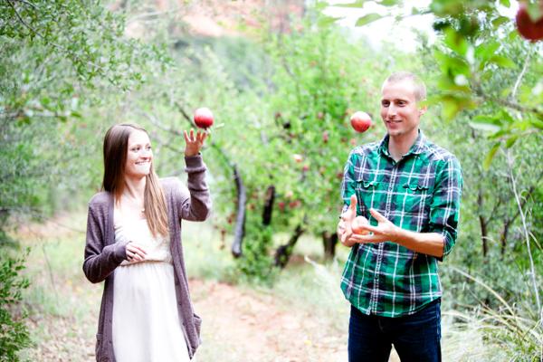 apple picking (11)