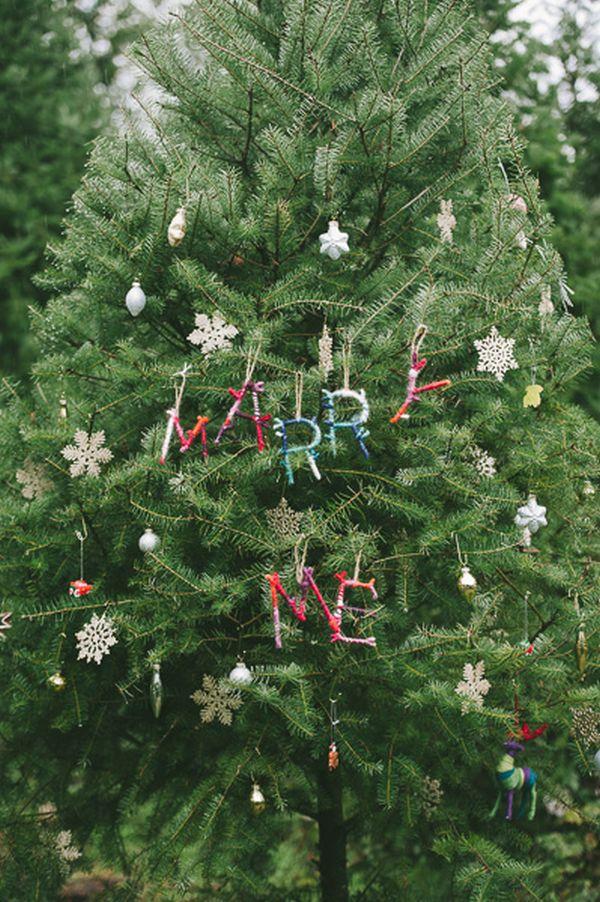 christmasproposal (1)