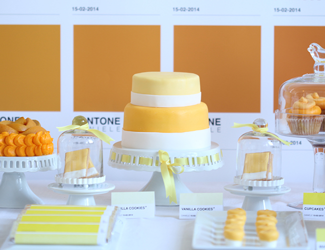 Pantone Birthday Party