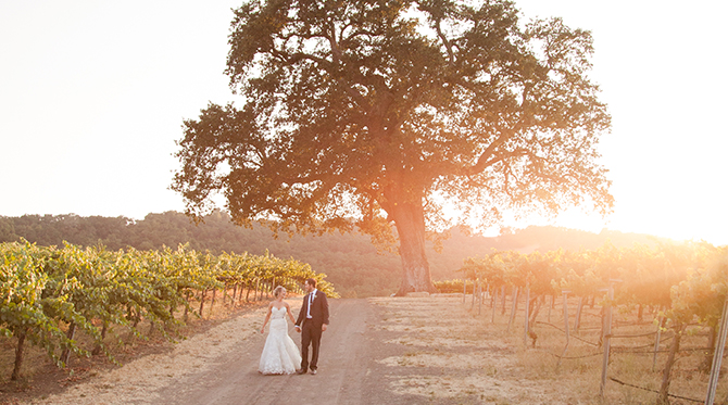 Romantic Hammersky Vineyard Wedding - Wedding Blog