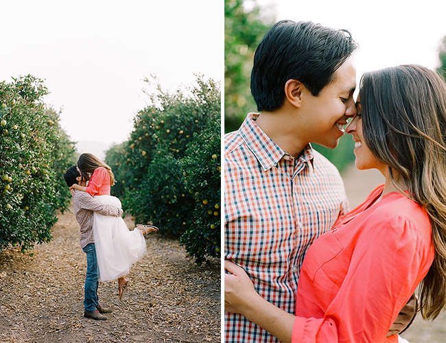 Orchard Holiday Engagement Session