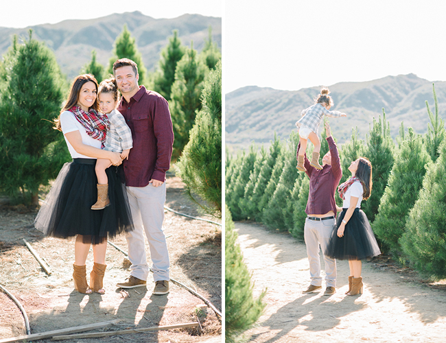 Christmas Tree Farm Family Session