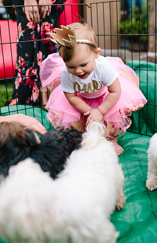 Puppy Princess Party - Inspired by This
