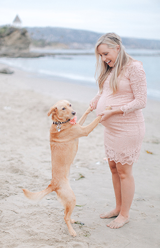 Elegant Laguna Beach Maternity Photos - Inspired by This