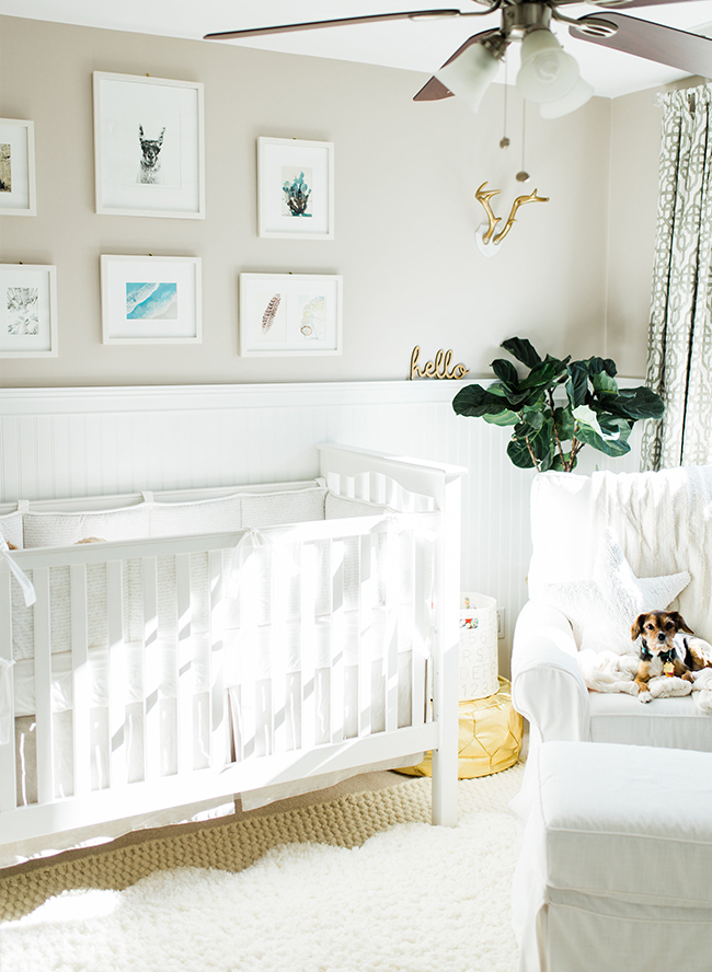 My Husband And I Had Already Agreed That We Wanted The Gender Of Our First Baby To Be A Surprise But How Will You Decorate Nursery