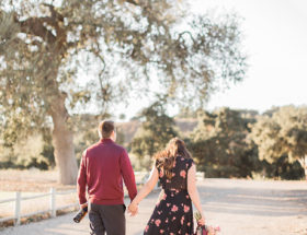Anniversary Photoshoot at a Vineyard