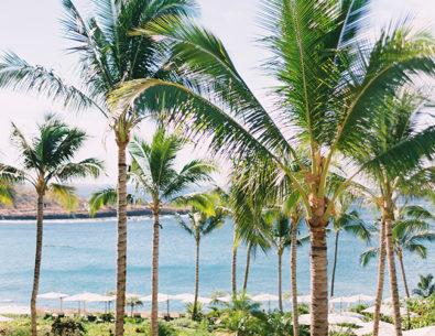 Travel Guide to Maui, Hawaii