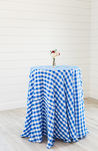Gingham Picnic Inspired First Birthday Party