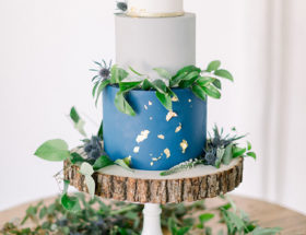 Blue Where The Wild Things Are Themed Baby Shower