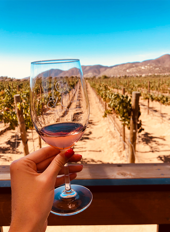 Weekend in Mexico's Wine Country