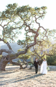 Neutral Book Themed Wedding, Wedding in Carmel