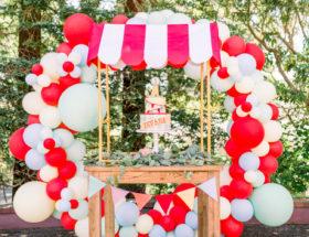 county fair birthday